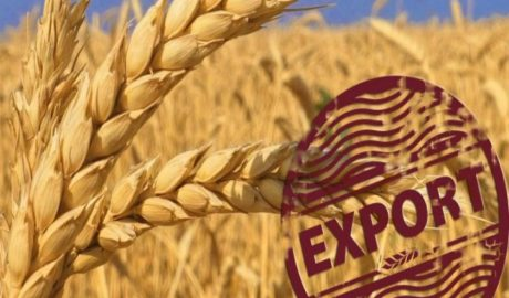 Potential for the development of the Russian grain complex and grain export